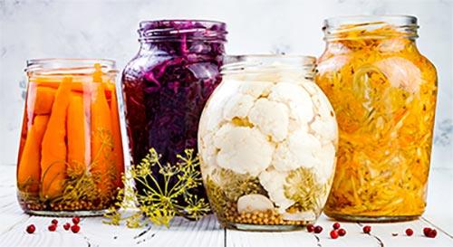 cibi fermentati